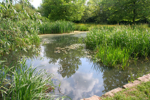 A body of water in Burbage Common