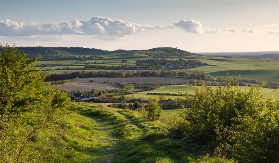 An aerial view of the Dunstable Downs