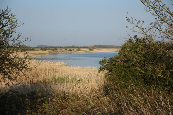 A view of the water in Marton Mere Local Nature Reserve