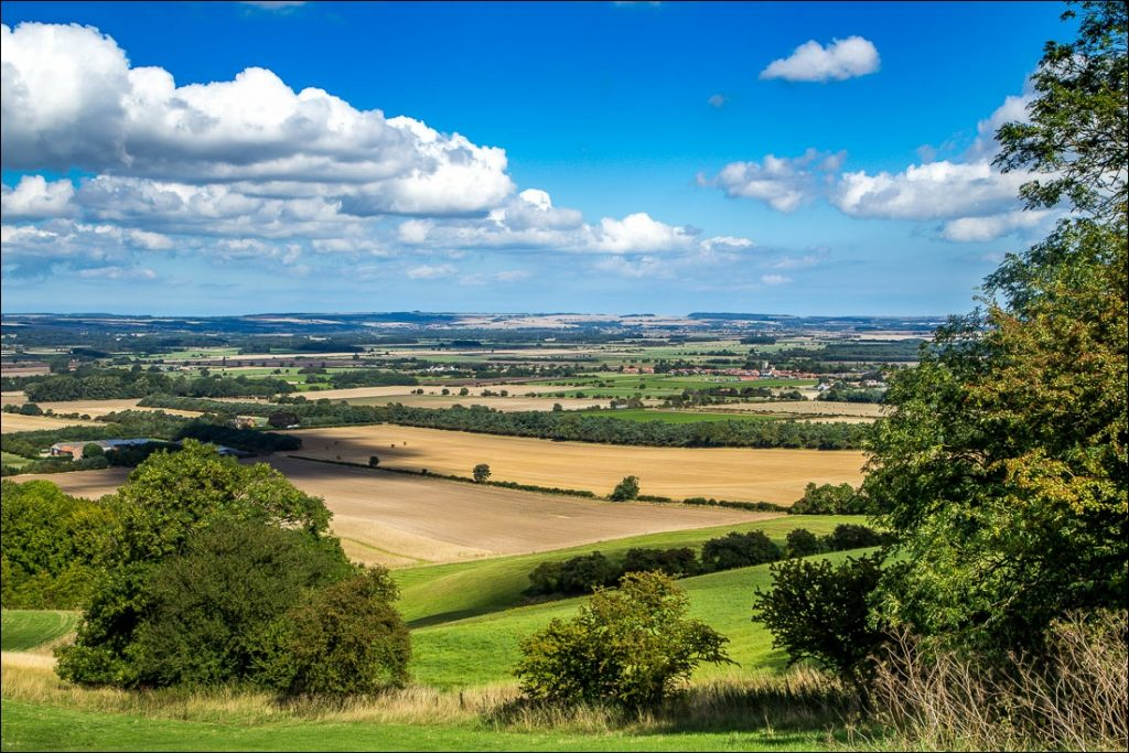 A view of the fields in Yorkshire Wolds Way
